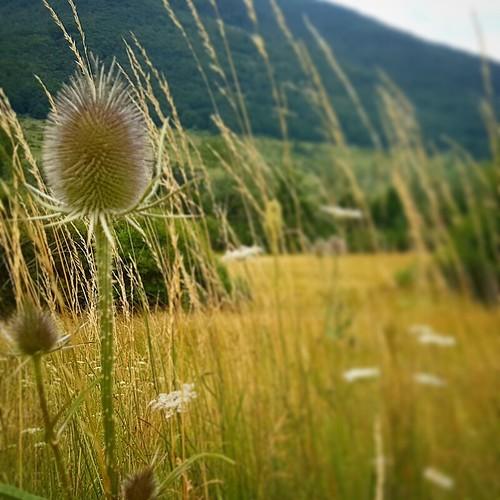 Panorami d'Abruzzo