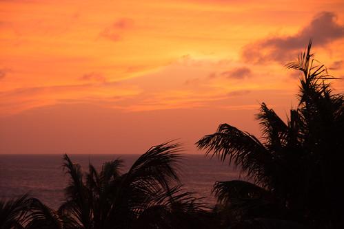aruba palm beach sunset april trees caribbean vacation travel sea