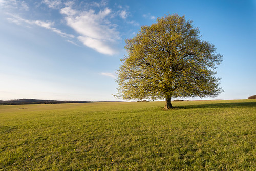 027_Flickr Landschaft.jpg