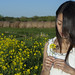 Yellow Flower by ChrisandMei