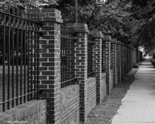 blackandwhite fence streetview brickwork pointofview trees bw blackwhite