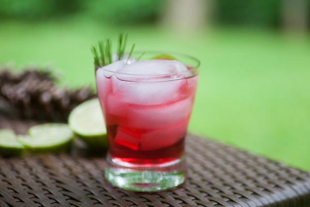 Cranberry Tonic-4