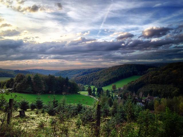 WK07: Felderbachtal - Immelberg