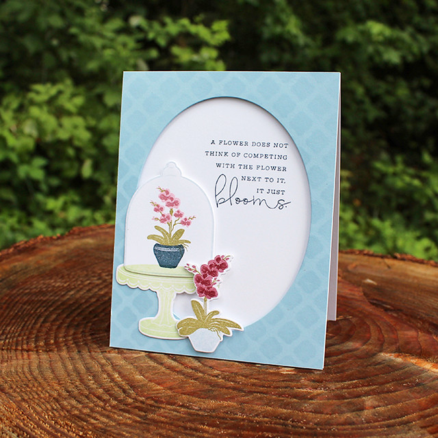 Blooming Orchids Card