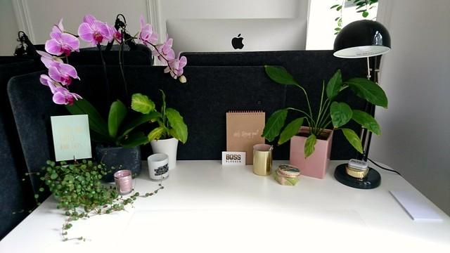 Här är min nya kontorsplats på Opus kontorshotell