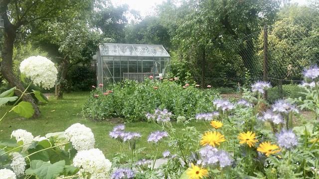 Groentekas landelijke tuin