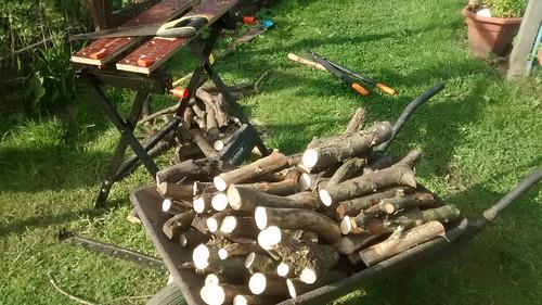 firewood July 17