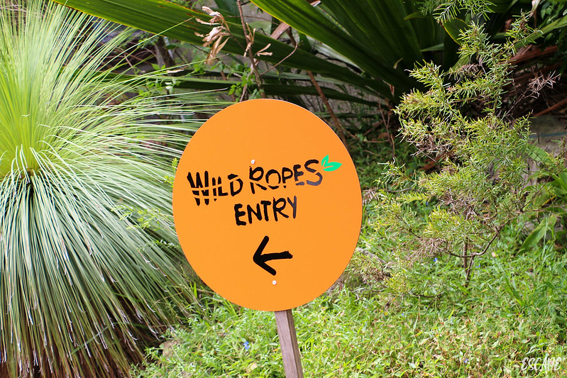 Wild Ropes - Taronga Zoo