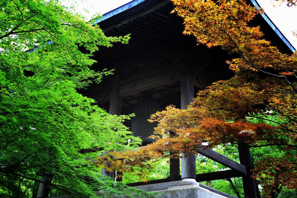 Maple & A Zen Bell At Heirin-ji Temple