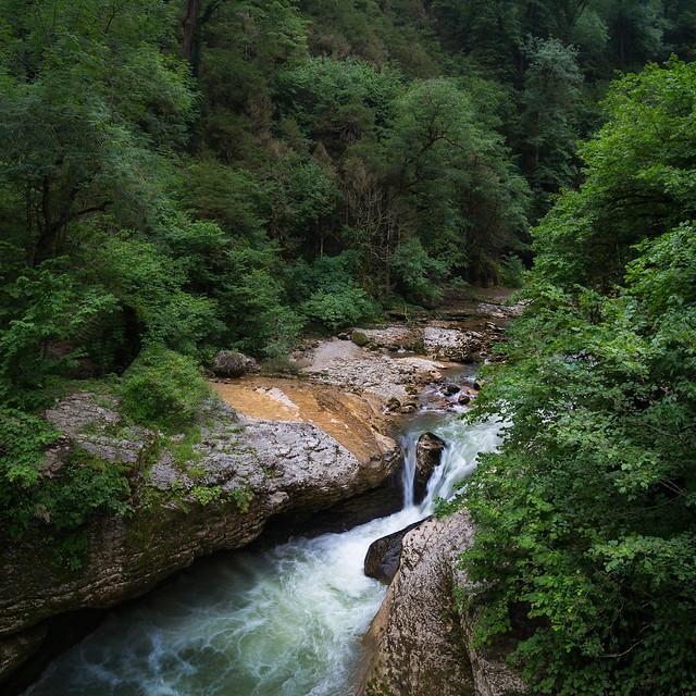 The Forest River, Nikon D3100, AF-S DX Zoom-Nikkor 18-55mm f/3.5-5.6G ED II