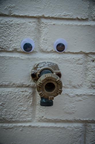 Googly-Eye Bombing Downtown Greenville-36