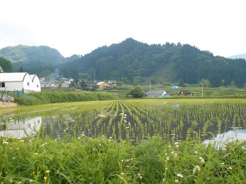 jp-takamori (11)