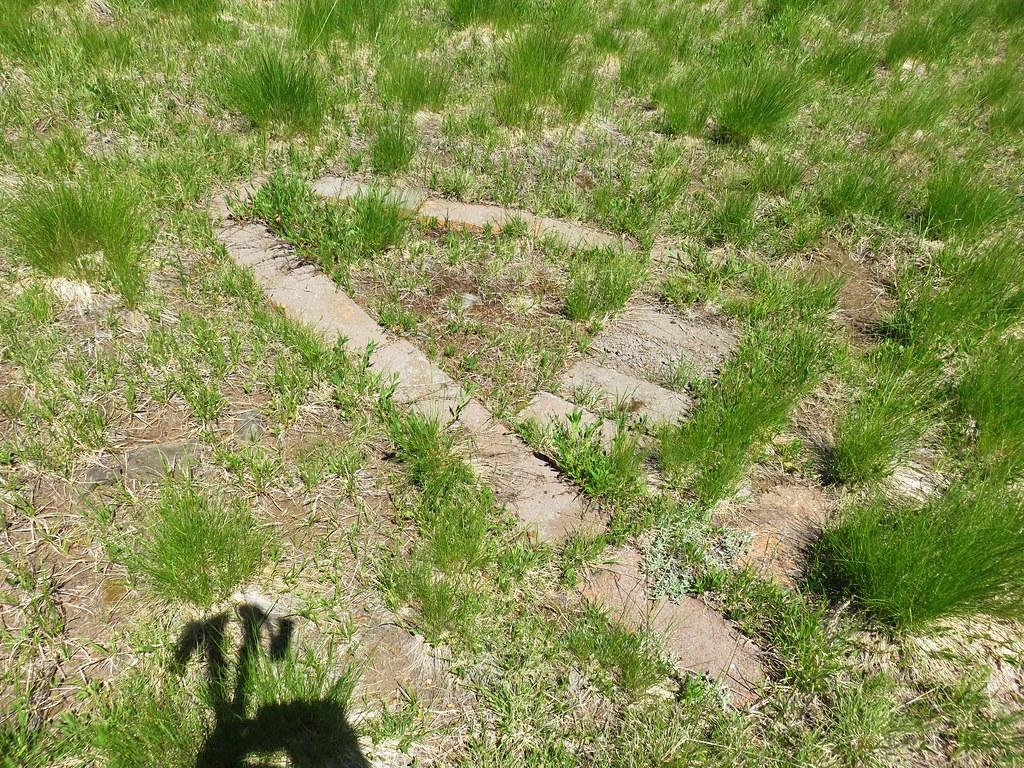 Blocks in a meadow along the Grasshopper Trail