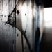 tunnel-1001069 by tjschloss