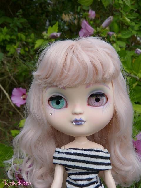 Les Vinyls de Koikokoro~Ileana, little vampire (Icydoll) - Page 2 35875196295_bc0f8be63d_z