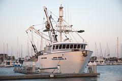 Purse Seiner Ocean Angel II - Nikon D750 - AFS Nikkor 28-300mm 1:3.5-5.6G VR