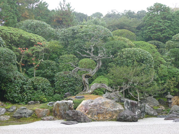 228-Kyoto