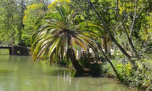 Parque natural curia portugal