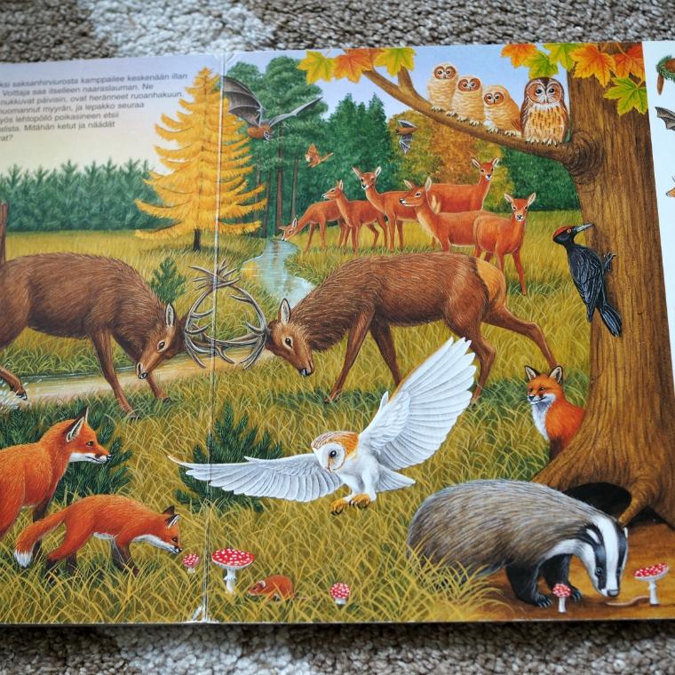 metsäneläinten_vuodenajat_kirja_2