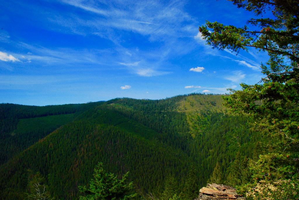 Koo Koo Sint Ridge