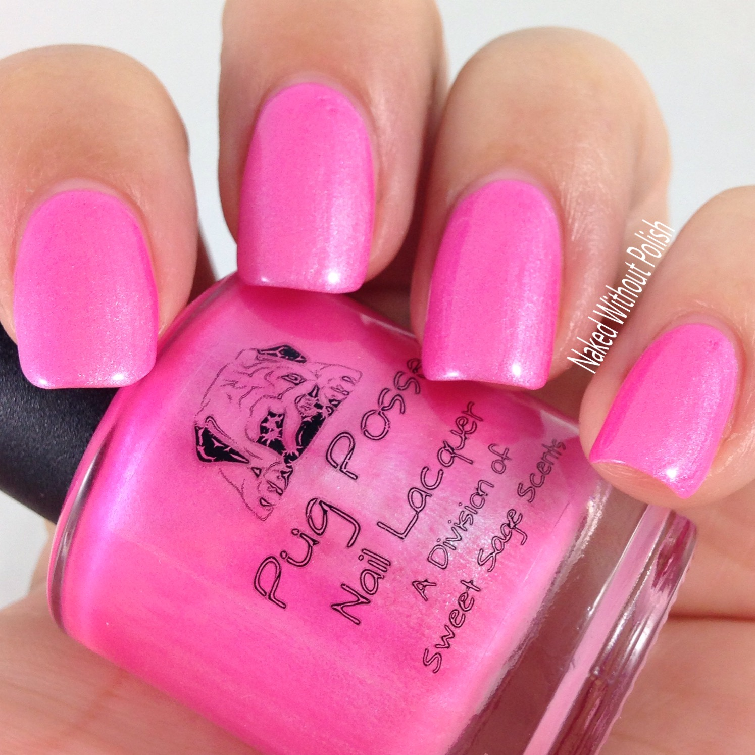 Pug-Posse-Nail-Lacquer-Real-Men-Wear-Pink-Timbs-6