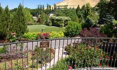 062317 Red Butte Gardens 162