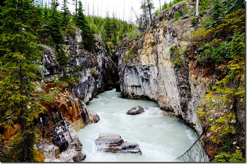Marble Canyon, Kootenay National Park 1