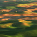 Palouse Sunrise Landscape by Rob Kroenert