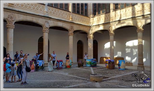 Museo del Vino Pagos del Rey y visita a Toro (23)