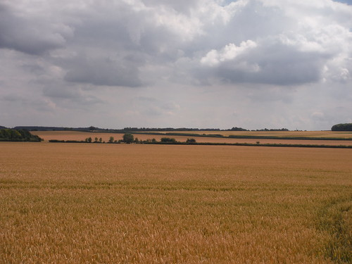 Long Views from the Icknield Way