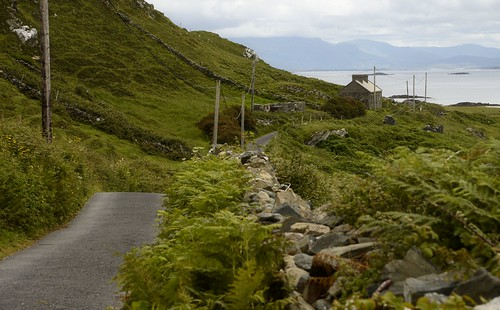 ireland nikond750 nikon inishbofin path pathway green emeraldisle cottage cottageview bayview lovelyplaces vacationdream