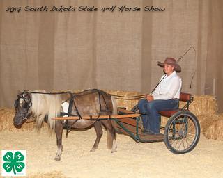 2017 South Dakota State 4-H Horse Show