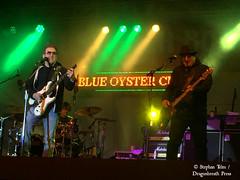IMG_3309_Blue Öyster Cult