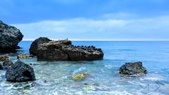 ... The Ocean ...