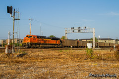 BNSF 8799 | EMD SD70ACe | BNSF Thayer South Subdivision