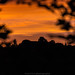 Dilsberg Sunset Silhouette - June 2017 VI