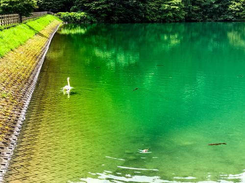 Lake Minami-Inagako