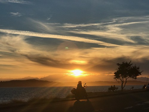 cameraphone iphone nofilter silhouette mountains borntobewild dude horizon light paintedsky sky silentnight road biker motorcycle west leisure contemplating people tree westseattle eye sunset alki beach alkibeach theeye clouds water