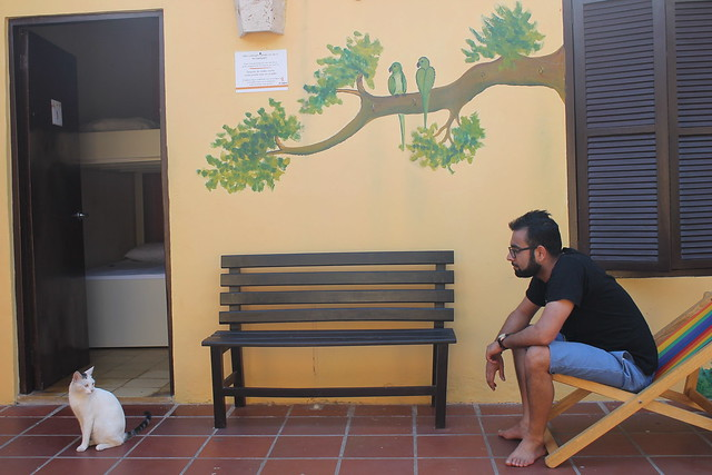 Staring contest with fellow hosteller