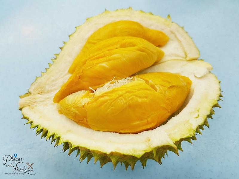 durian d13
