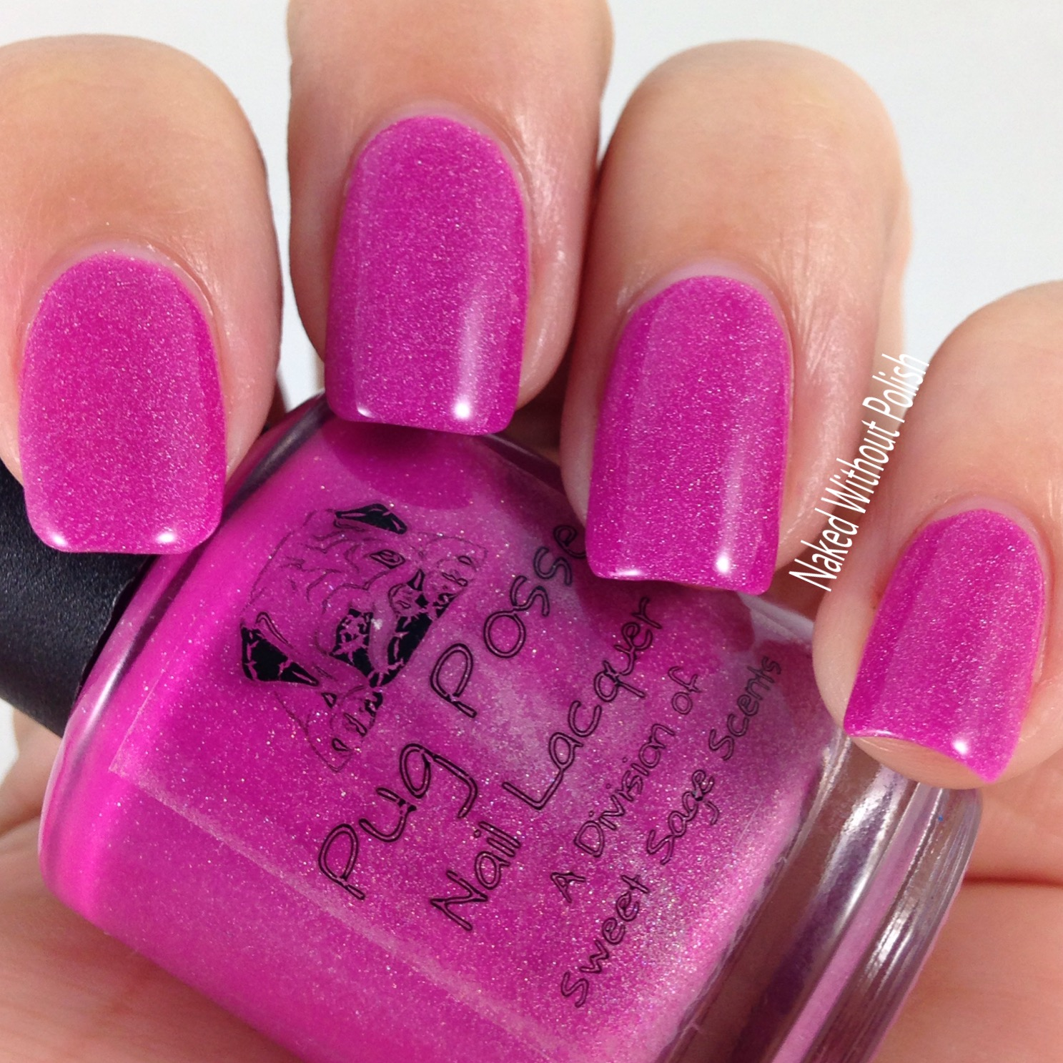 Pug-Posse-Nail-Lacquer-Loose-Lucy-6