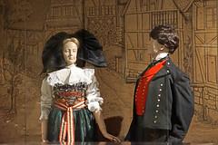 Le musée alsacien (Haguenau) - Photo of Hochstett