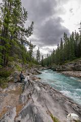 Hiking Siffleur Falls