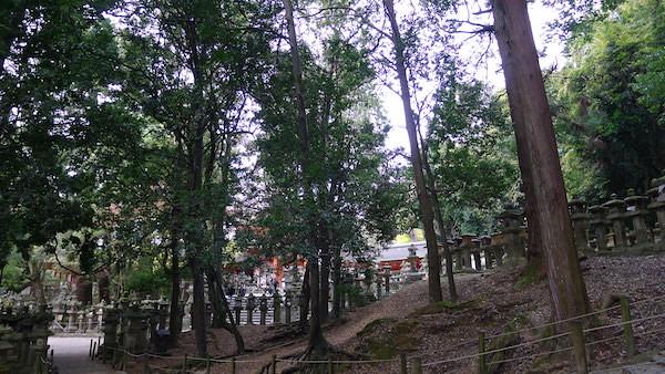 328-Nara
