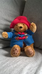 Paddington Bear: 50 Years