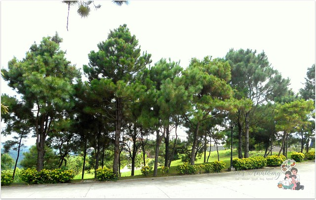 crosswinds resort suites tagaytay (16)