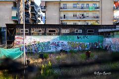 Roma. Ostia. Graffiti by Hunto, Phen, Pepsy, Tosh, Cimpa, Zork, Lloyd, TLM, Puf - 2007