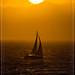 Sailing Away! California Socal. by bryanasmar