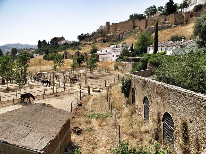 baños árabes ronda_patrimonio_rehabilitación jardines_acueducto