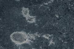 Belgian blue limestone texture 2